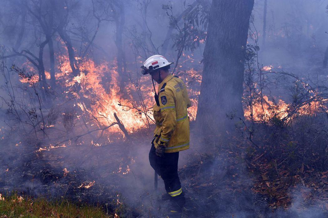 澳洲自2019年9月以來不斷發生山林大火。法新社
