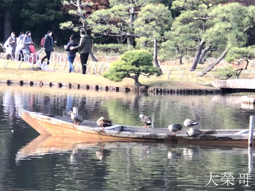 18.木船浮於大池上。