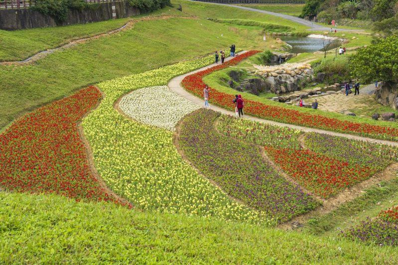 不同色塊的花海,讓大溝溪生態治水園區更加鮮活。圖/取自台北市政府水利工程處官網