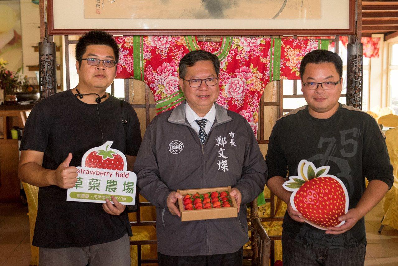 林家古厝在觀音蓮花園休閒農業區新增一座面積達1028坪的室內草莓溫室,昨日桃園市...