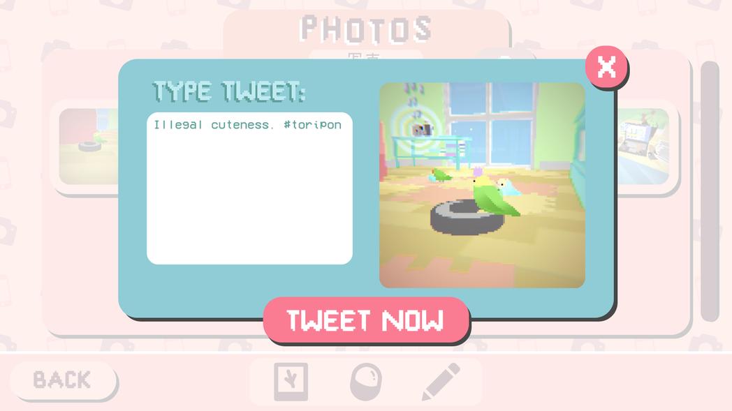 和推特建立連結之後,遊戲中可以直接分享照片到推特個人頁面。