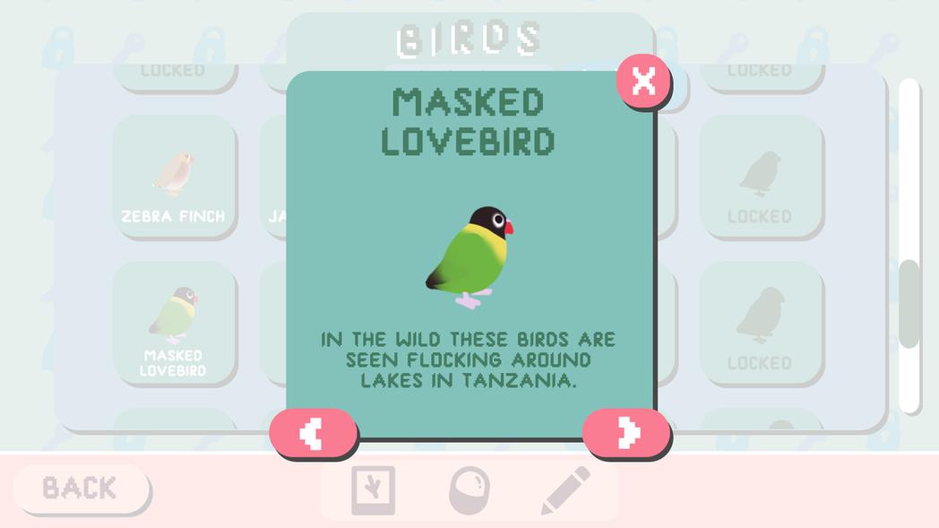 看到喜歡的鳥類,遊戲還有提供簡介,讓玩家可以找到更多自己喜歡的鳥。