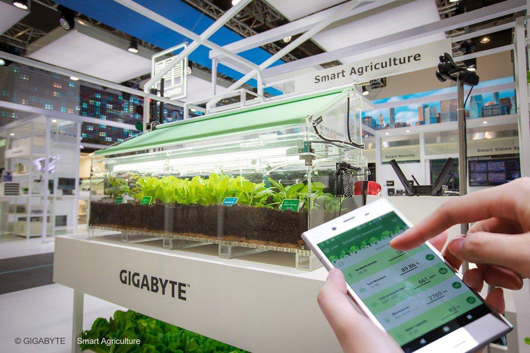 技嘉智慧農業系統運用大數據分析,為植物打造最佳生長環境。 圖/技嘉科技提供