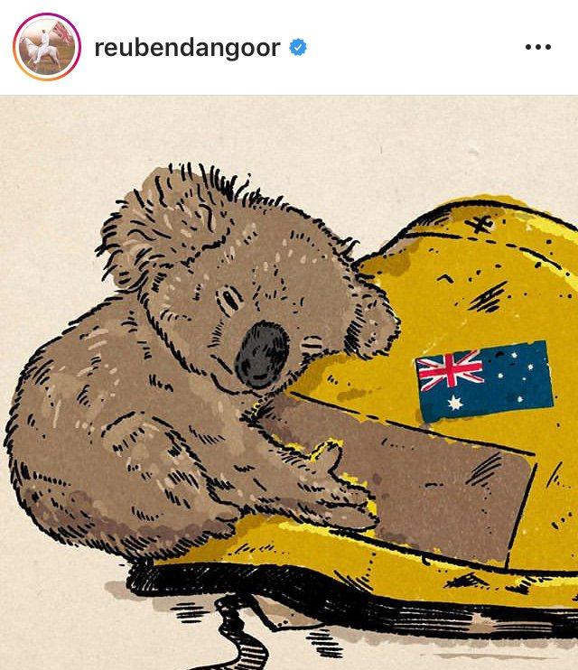 無尾熊攀附在消防帽上的插畫,出自英國插畫家Reuben Dangoor之手。圖╱...