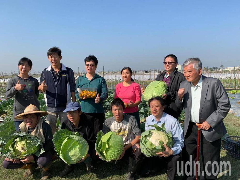 蓮心園籌建庇護農場溫室,義賣巨無霸高麗菜萬元。記者謝進盛/攝影