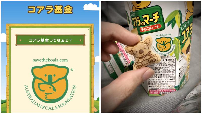 有日本網友在推特上分享,買樂天小熊餅也可以為拯救澳洲無尾熊盡一份心力。圖/Twitter
