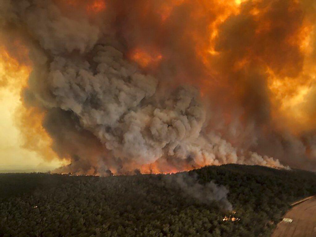 據報導澳洲正有2700名消防員在第一線對抗野火,估計大火已燒毀了1470萬英畝土...