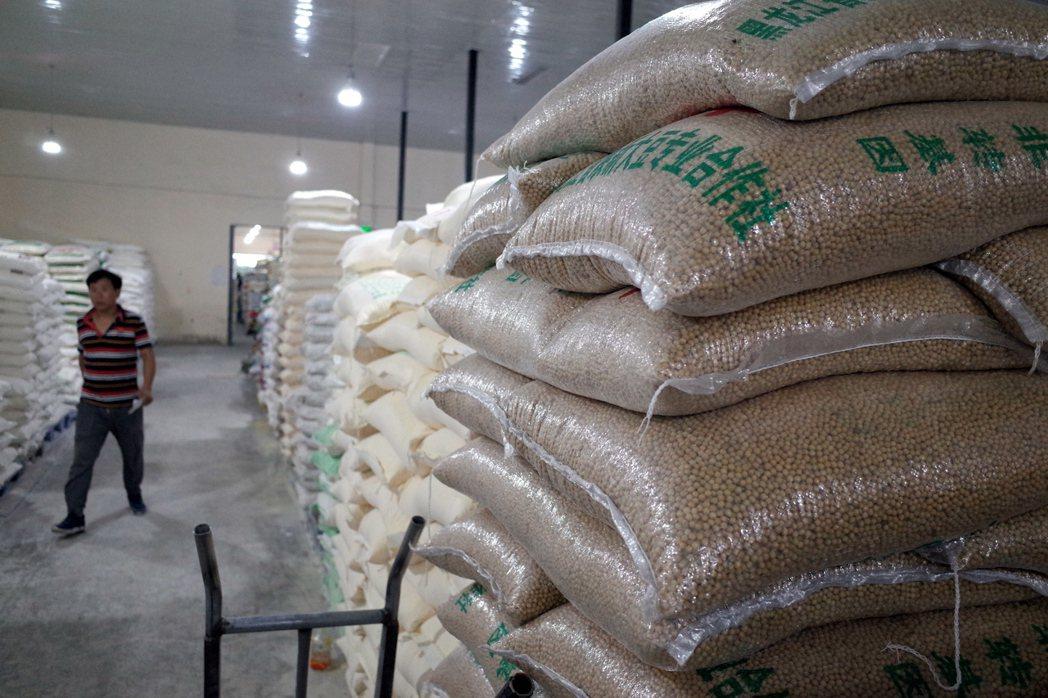 中國為全球最大的大豆進口國,圖為北京穀物批發市場內成堆擺放的袋裝大豆。(歐新社)