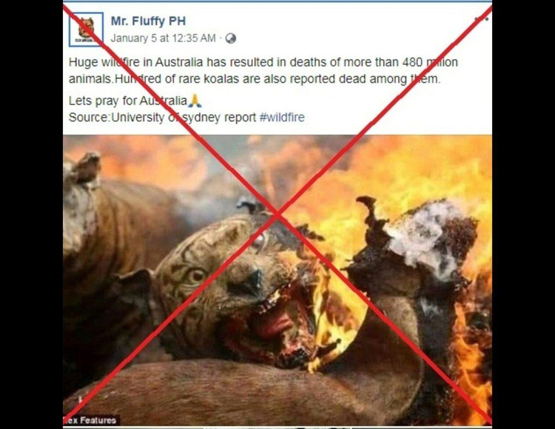 澳洲野火的假新聞實例之一,讓人誤信是野火燒死老虎,但其實這張照片是2012年印尼...