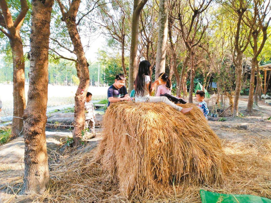 吳晟約20年前在媽媽留下來的農田裡種植原生樹種,現在已是孫子們學習的學校了。 圖...