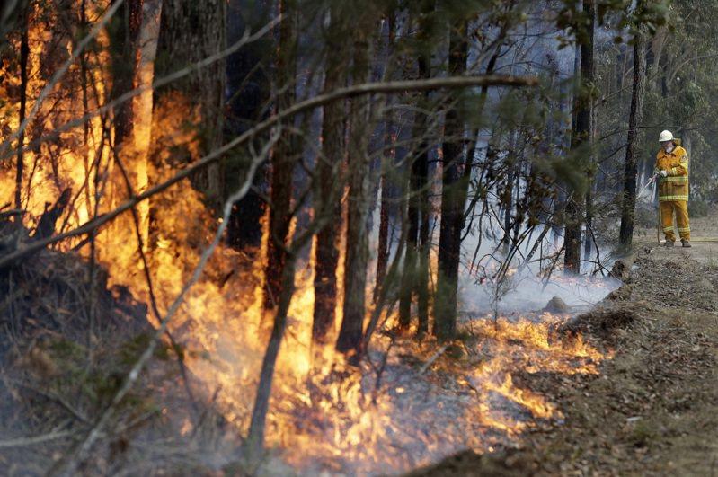 澳洲疲憊的消防員表示,他們今天終於控制澳洲最嚴重的「超大野火」,而潮濕天氣也有望為野火肆虐的鄉村地區帶來喘息機會。 美聯社