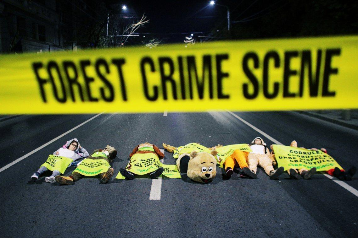 羅馬尼亞森林暴力問題,牽扯龐大的利益裙帶關係,從基層的護林員、地方居民,到伐林集...