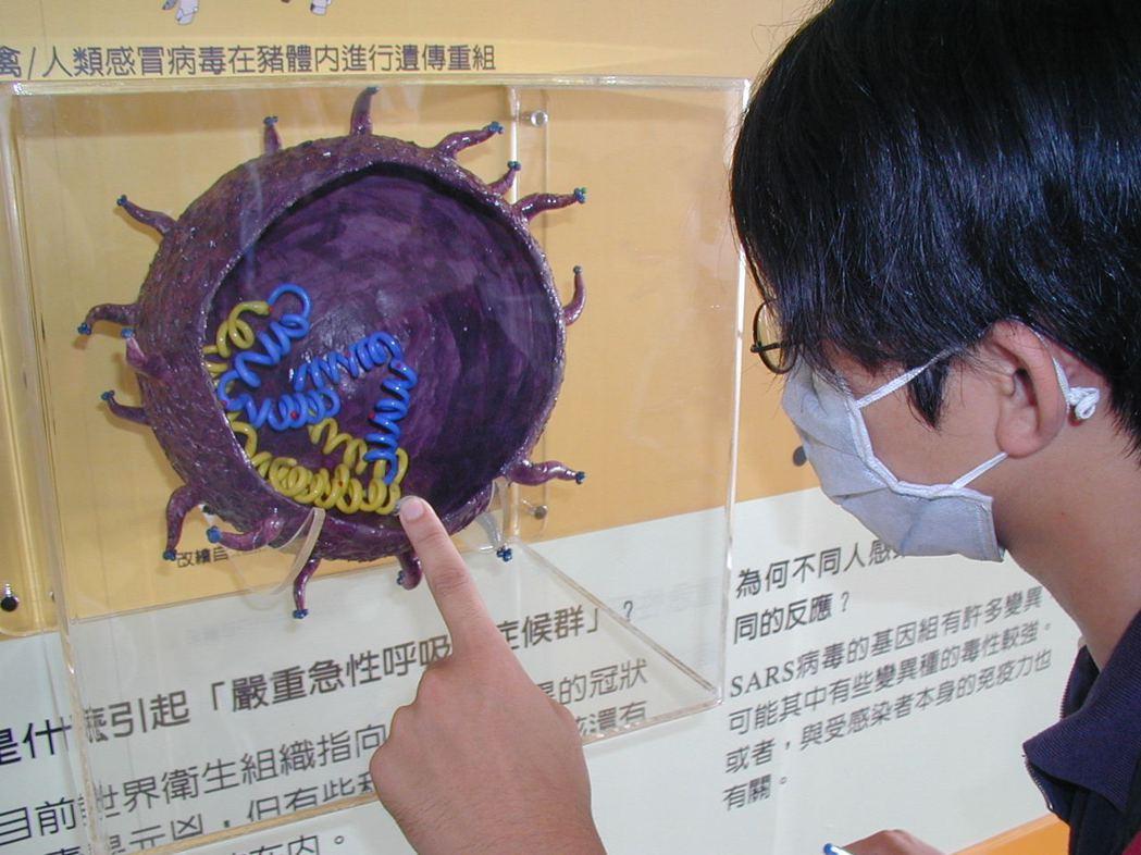 一位民眾戴著口罩,仔細觀察SARS冠狀病毒的解剖模型。 圖/聯合報系資料照片
