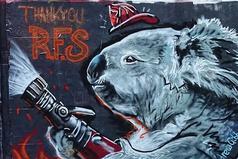 淚眼無尾熊消防員暖哭眾人 澳洲藝術家塗鴉募款