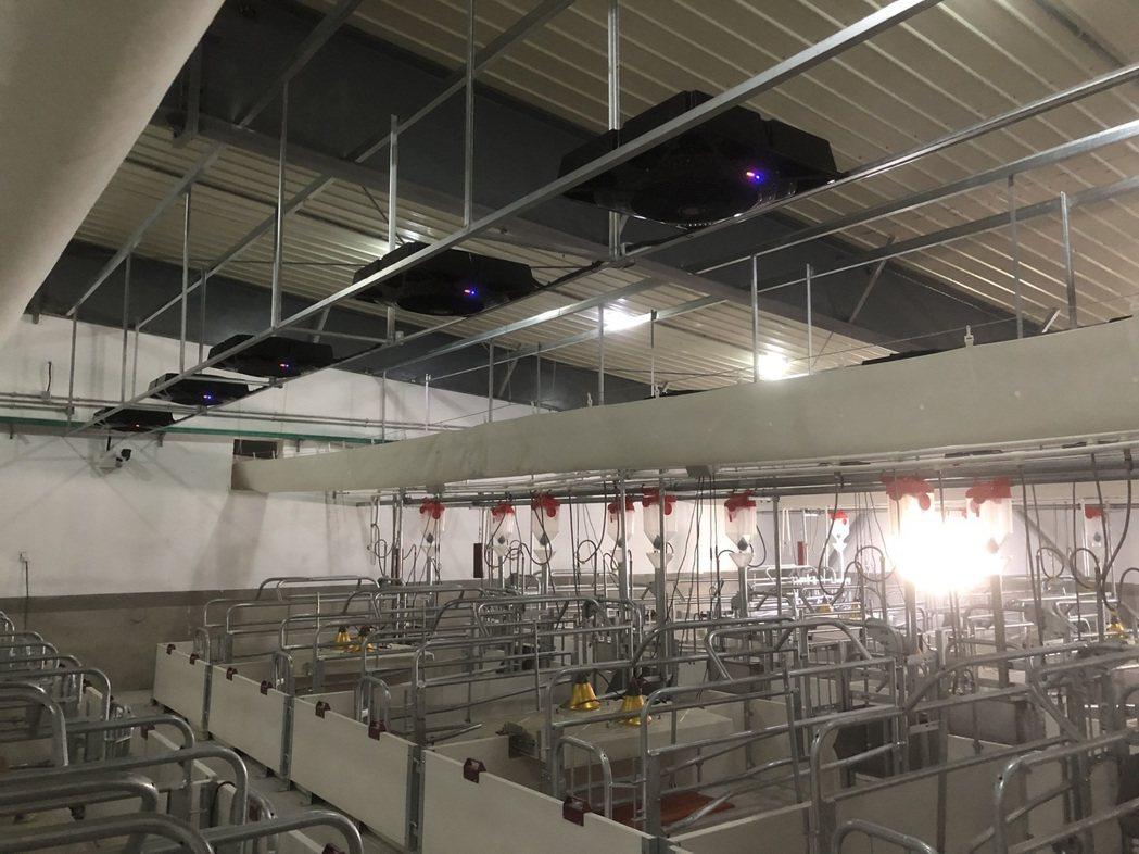 養豬場安裝高利氫氧離子循環扇。 高利科技/提供。