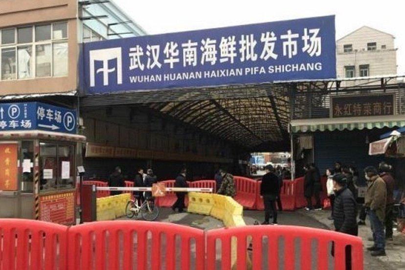 境外武漢肺炎沒去華南海鮮市場 疾管署:不排除人傳人
