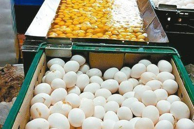 雞蛋及兼售食品添加物化工原料業者 今年食安稽查重點