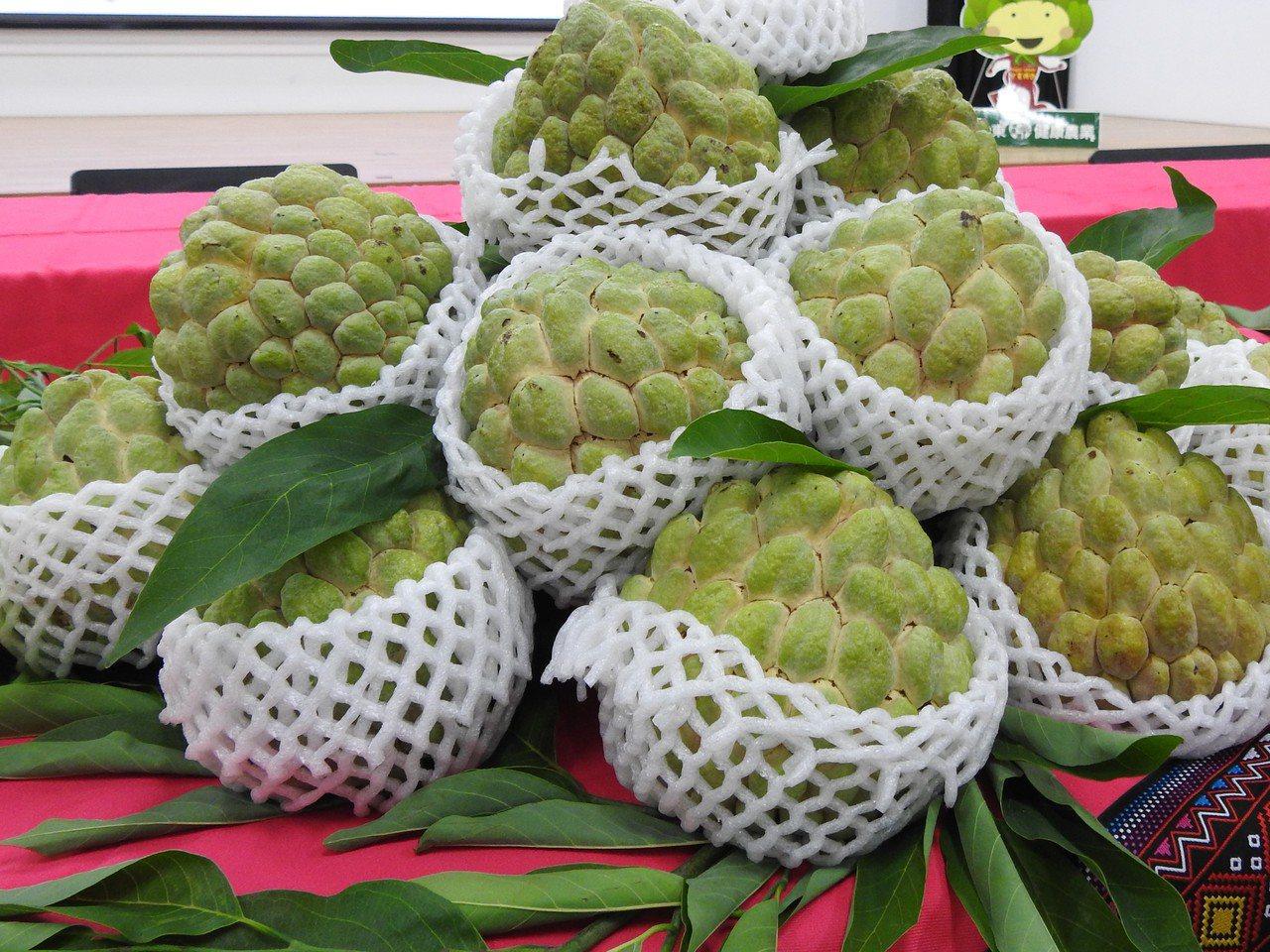 接近農曆年,目前正值台東釋迦產季,市場價格持續上揚中,也成為宵小覬覦的目標,縣府...