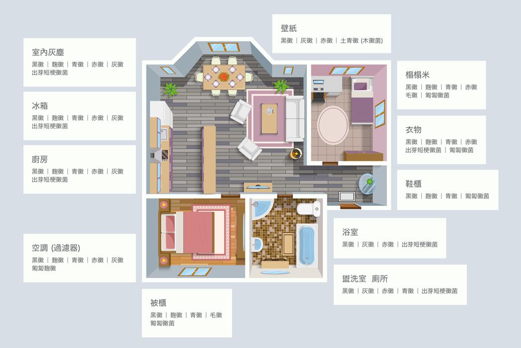 圖為室內居家黴菌分佈/饒允正提供