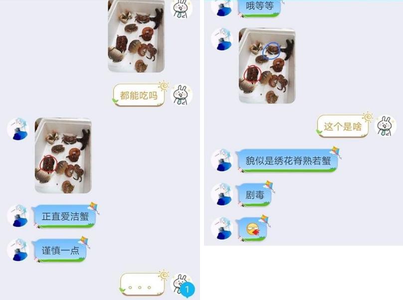 學弟傳訊息給朋友問能吃嗎,意外得到「劇毒」回覆。圖截取自爆廢公社。