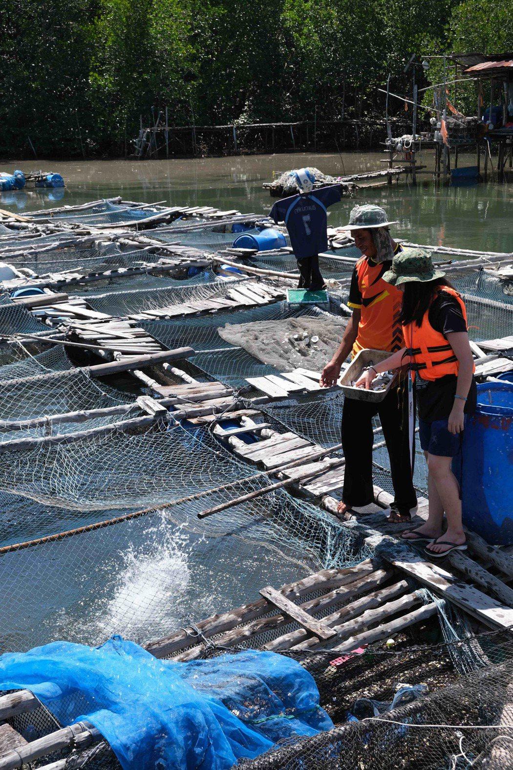 泰國蘭達島:章魚、螃蟹與獨木舟漫遊。 Airbnb /提供