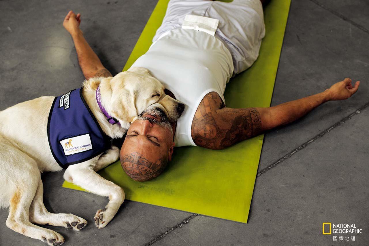 在加州聖地牙哥附近的州立監獄,派崔克.阿坤亞以深層放鬆的攤屍式和他訓練的服務犬宙...