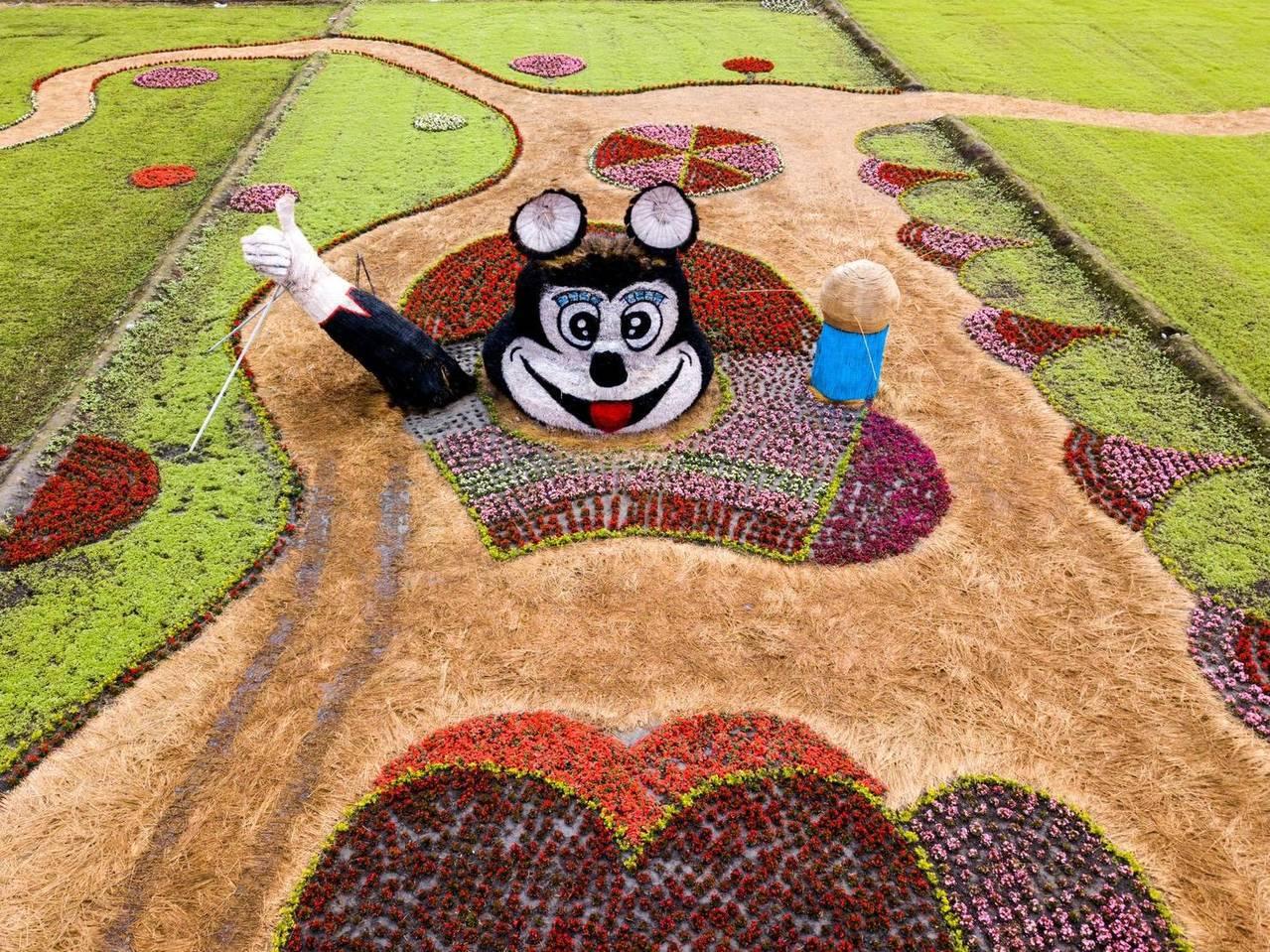 花蓮壽豐鄉農會今年利用稻草,做出復刻版「美崙山米老鼠」矗立在花海中,令人印象深刻...