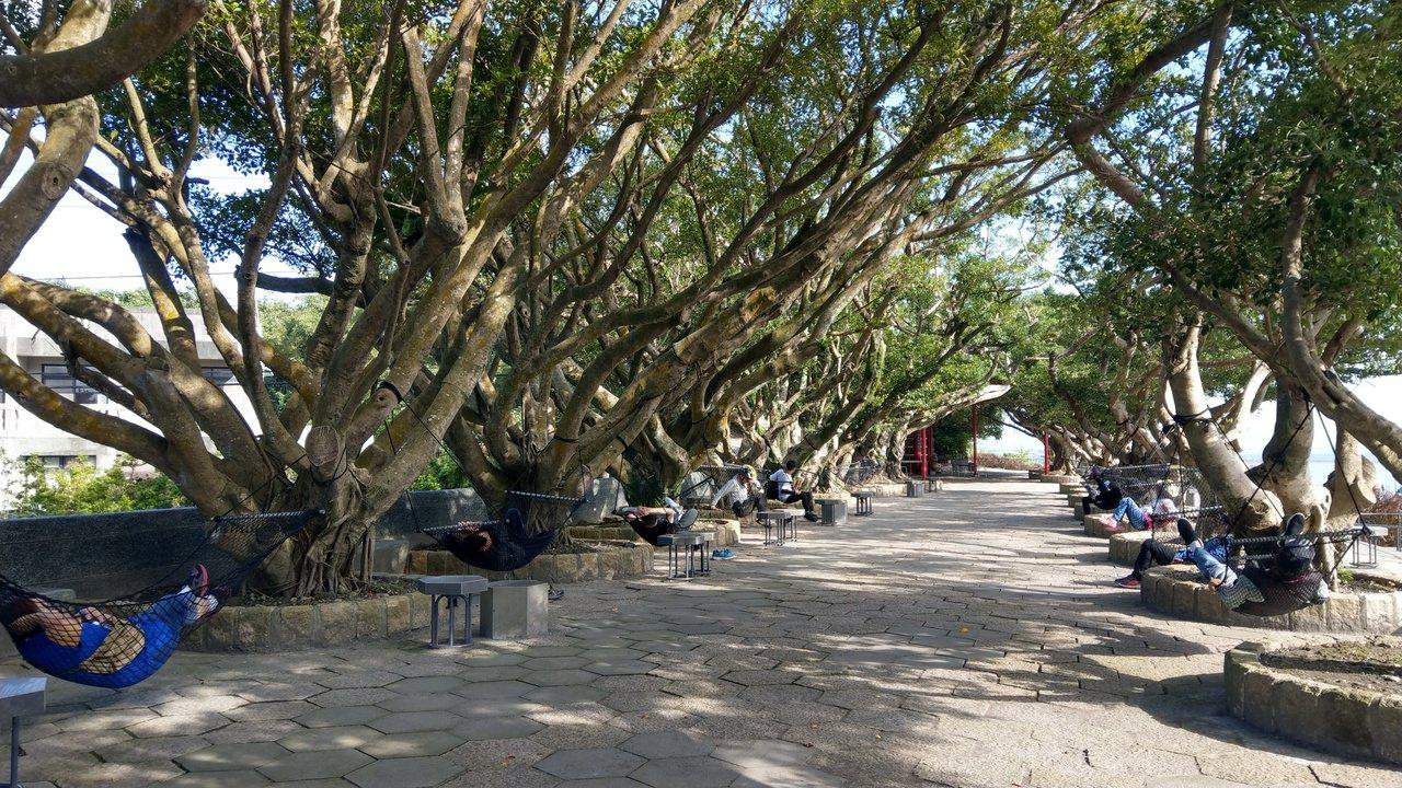 「愛瘋宜蘭」遊程帶領遊客騎乘腳踏車前往東港榕樹公園,這裡有吊籃,躺在籃裡休憩非常...