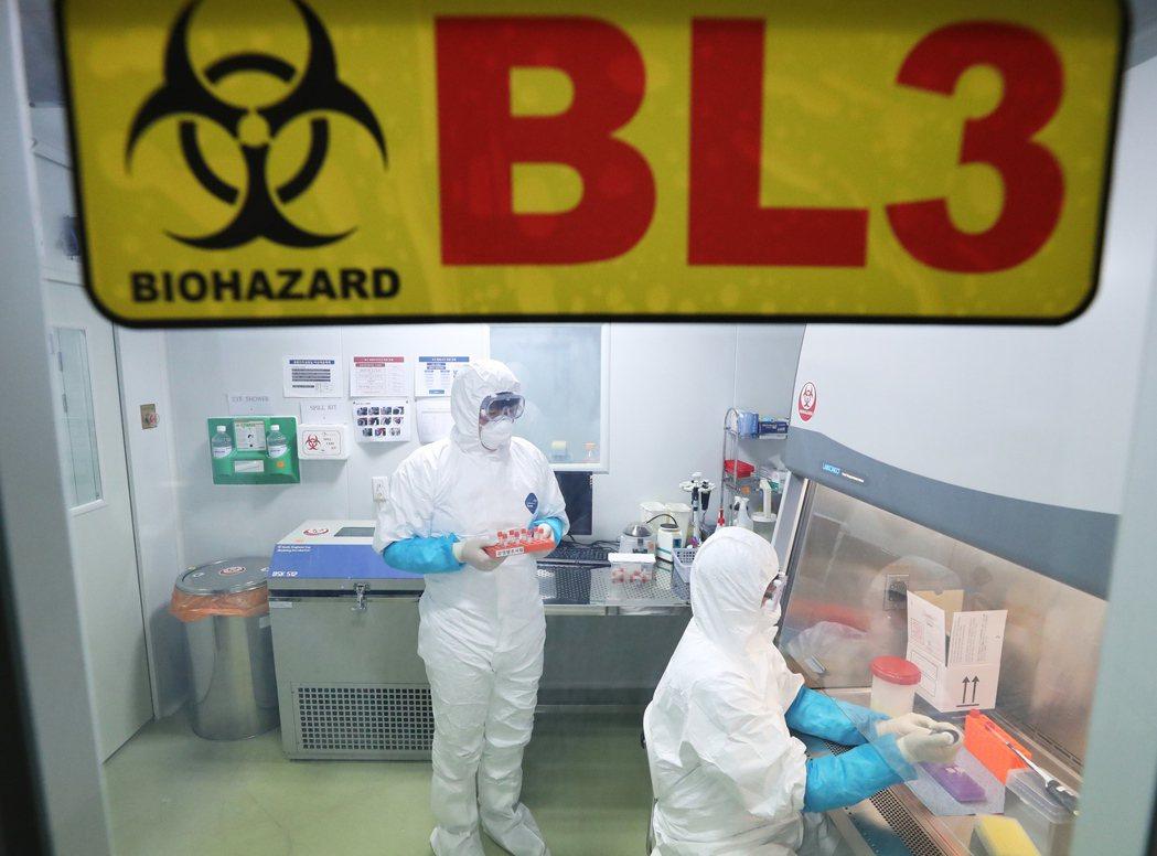 日本出現武漢肺炎首例。圖為研究人員檢驗樣本畫面。歐新社