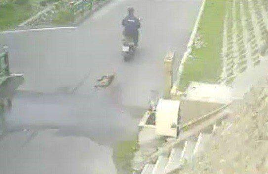 台中市動保處去年4月11日接獲民眾通報,大安區有隻狗狗受傷死亡,傷口看起來是遭拖行,動保人員調閱沿途監視器,發現一名男子騎機車來回拖行犬隻的畫面。圖/台中市動保處提供
