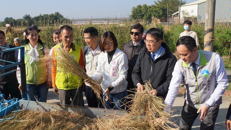 台南市環保局今天在後壁區粕面宋江公園舉辦「獨稻之處-廢棄稻稈再利用」推廣會,呼籲民眾勿燒稻草造造空汙。圖/台南市環保局提供