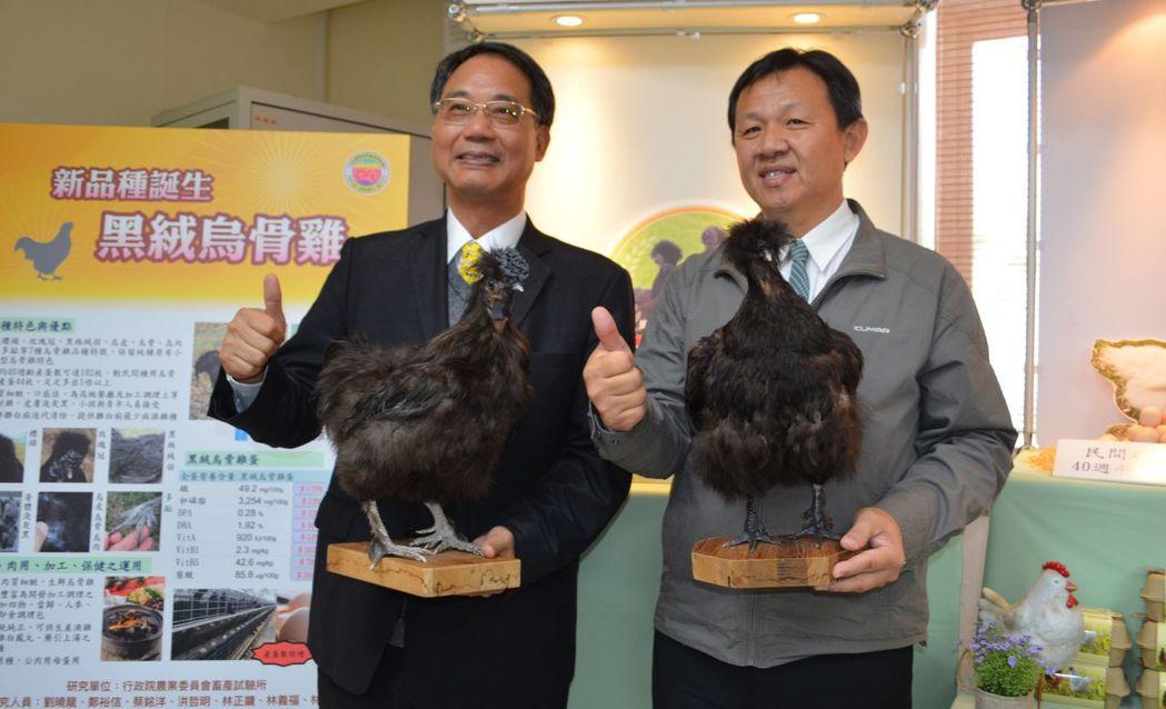 黃振芳所長(左)與劉曉龍展示誕生之新品種-黑絨烏骨雞。  陳慧明 攝影