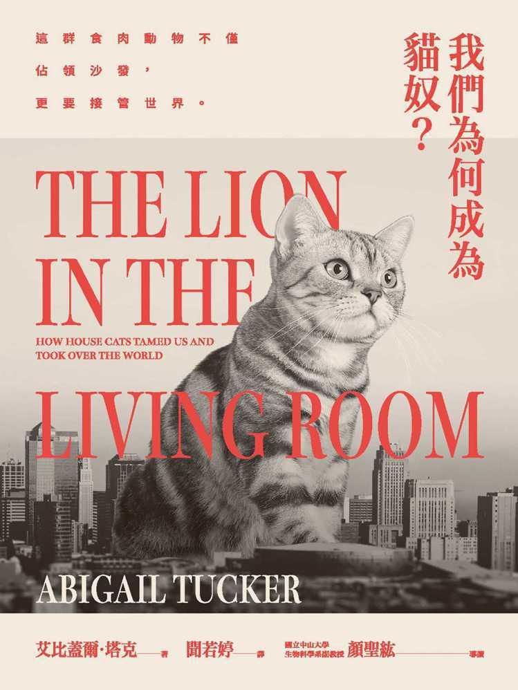 圖/紅樹林/城邦出版《我們為何成為貓奴?這群食肉動物不僅佔領沙發,更要接管世界》