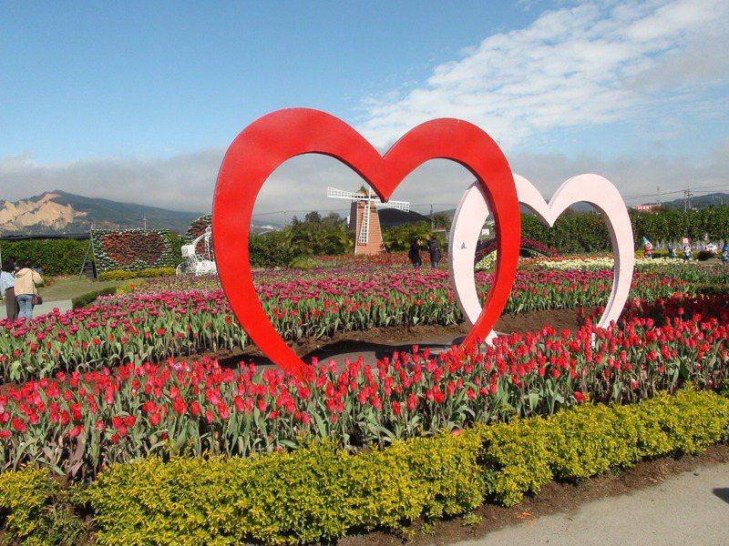 春節期間,中社觀光花市推出30萬株鬱金香迎客,將輪流綻放到3月中旬。記者余采瀅/攝影