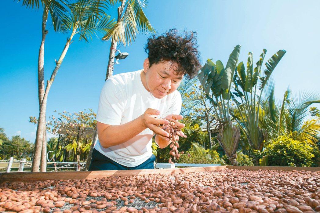 捧起一把可可豆,這是許華仁實踐tree to bar的其中一步驟。 攝影/陳立凱