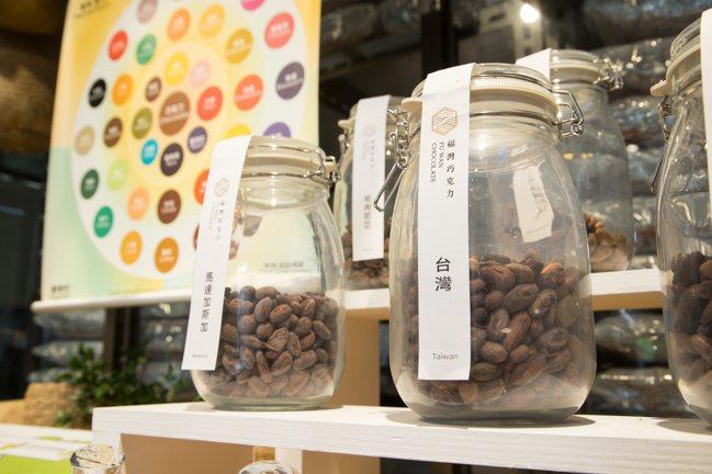 許華仁選用台灣在地食材製作巧克力。 圖/陳立凱攝影