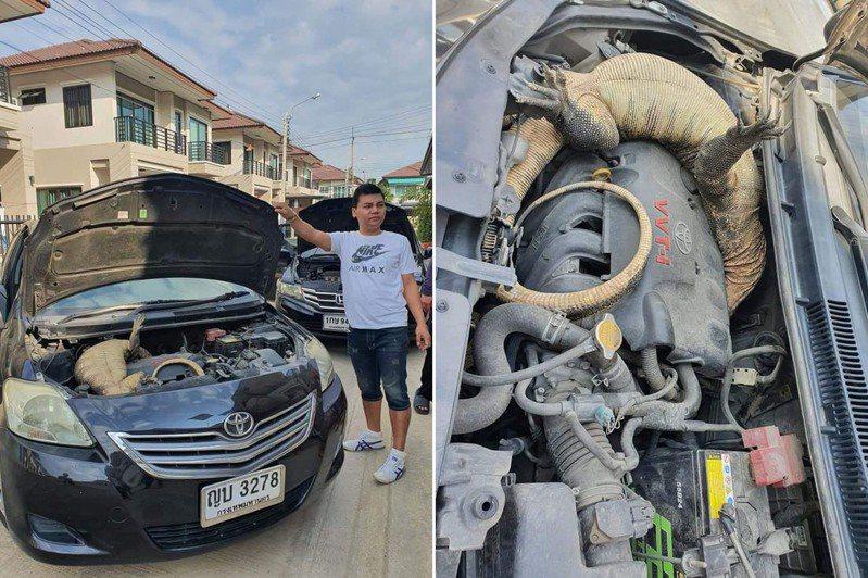 泰國民眾打開引擎蓋時發現內有巨蜥。 圖/翻攝自臉書粉專「ข่าวชาวบ้าน - Thai TV Social」