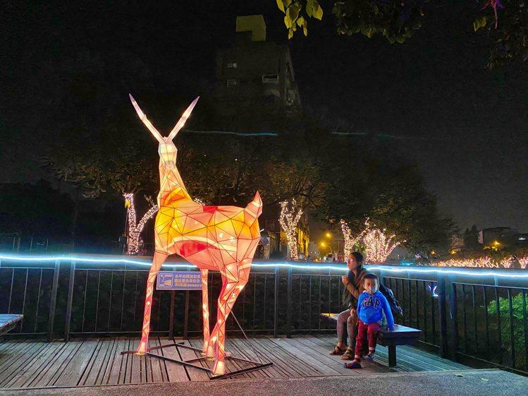 今年設置各種大型動物主燈,看起來就像處在夜間限定的療癒動物園中。記者魏妤庭/攝影