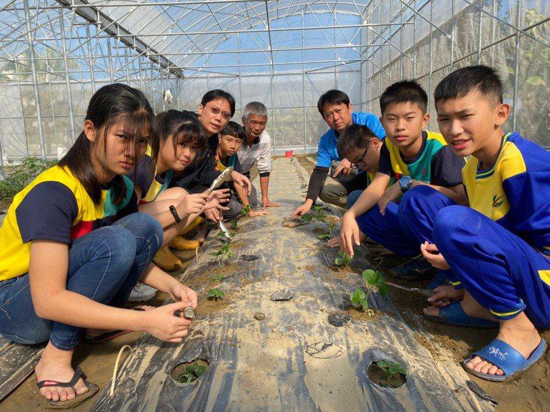 校園闢建溫室農場,台南官田國小親師生自種作物。圖/校方提供