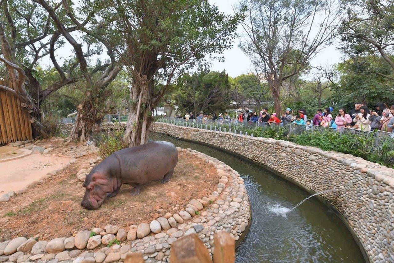 新竹市立動物園春節期間不打烊,初一到初五照常營業,除夕休園。圖/市府提供
