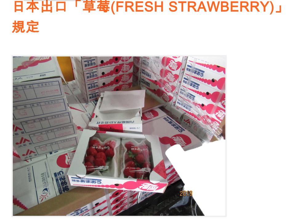 日本進口生鮮草莓驗出農藥超標,已全數退運或銷毀。圖/食藥署提供