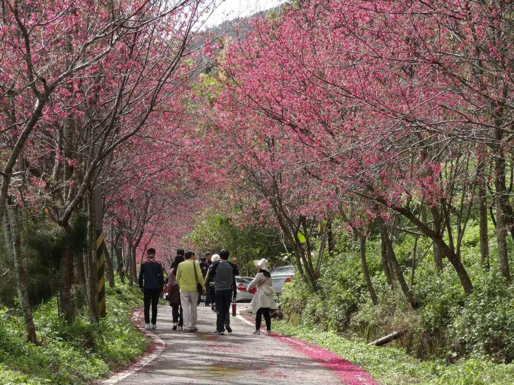 因陸客來台人數大幅縮減,交通部觀光局官員以目前收到的春節期間來台團客人數推估,春...