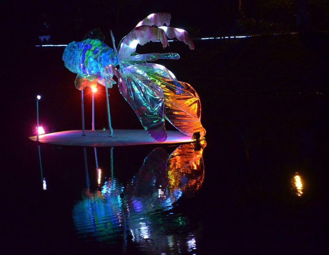 披著炫麗夢幻的金魚,靜謐悠遊在月港之中的「風華魚韻」。  陳慧明 攝影