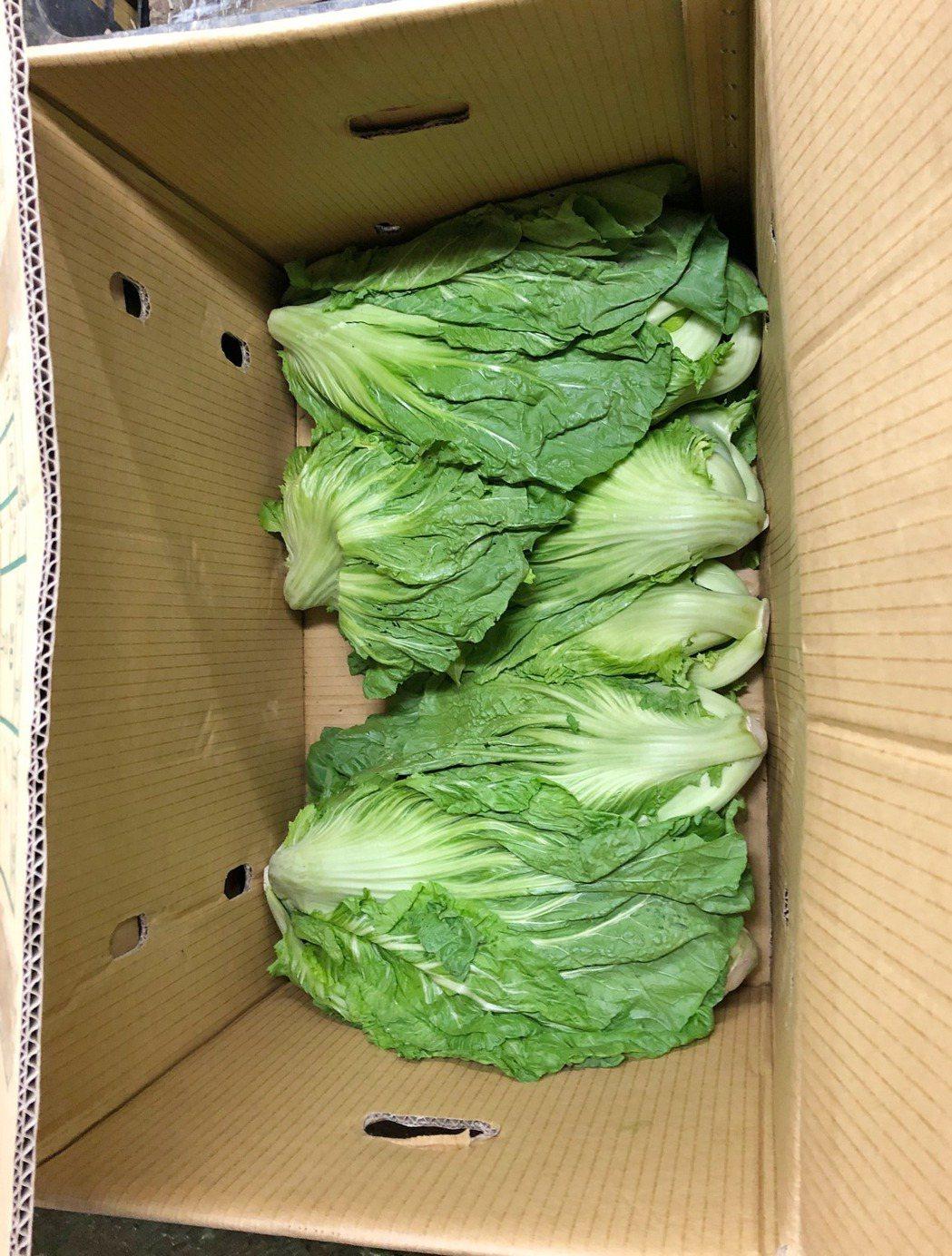 過年前台北市公布最後一波生鮮蔬果殘留農藥抽驗結果,衛生局去年11、12月至市場、...