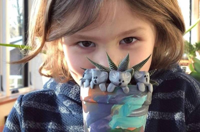 6歲的科利(Owen Colley)在家人協助下用低溫陶泥製作無尾熊公仔,並發起眾籌。(gofundme圖片)