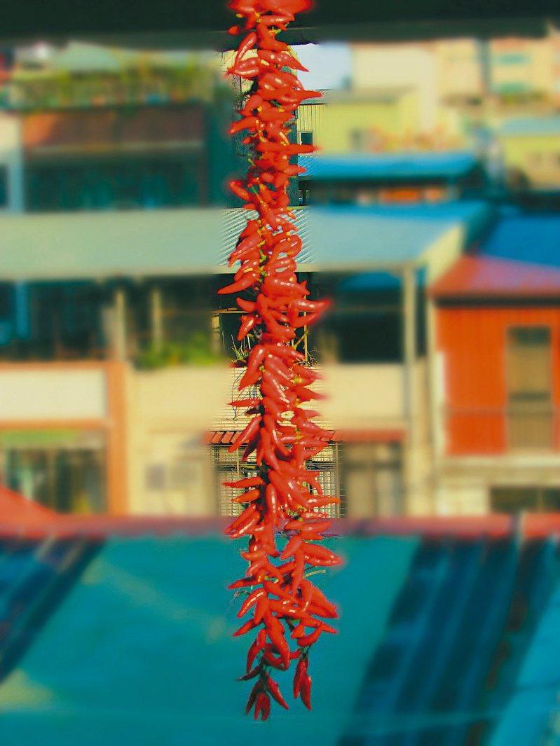 過年啦!用細繩把紅辣椒串起來,掛在陽台屋簷下,晒乾備用,像一串喜氣洋洋的鞭炮,有過年喜慶的景象。圖/人間福報