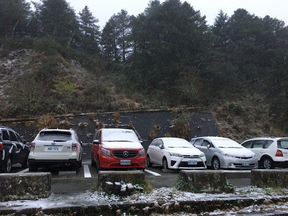 玉山今晨大雪紛飛。圖/讀者提供