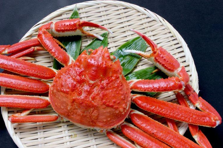 山形縣當地的「庄內北前蟹」號稱松葉蟹中的名牌,皆為重1公斤以上、甲殼寬13公分以...