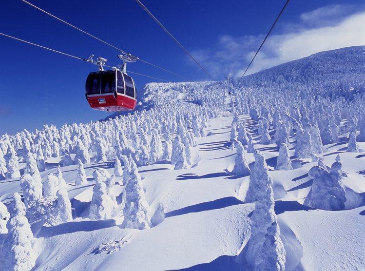 藏王樹冰,乃是結合風、雪與樹木的天然奇景。圖/JR東日本提供