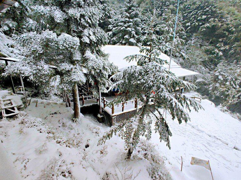寒流來襲,高山地區因為溫度夠低有水氣,也紛紛下起雪來,嘉明湖山區的向陽山屋和嘉明湖避難山屋都有不小的積雪。圖/天馬登山隊提供